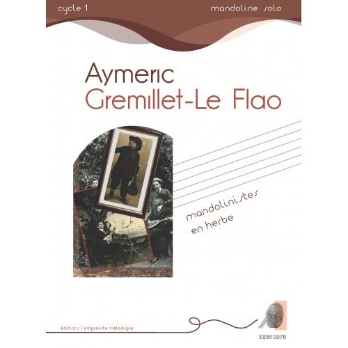 Aymeric Gremillet-Le Flao - Mandoliniste en herbe
