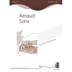Arnaud Sans - Suc en morceaux